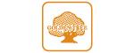 logo của BAO BÌ - SẢN XUẤT & BUÔN BÁN - GOLDEN TREE PLASTICS - bao bì không gian Jumbo, bao LDPE, bao dệt, vải dệt PP - PE